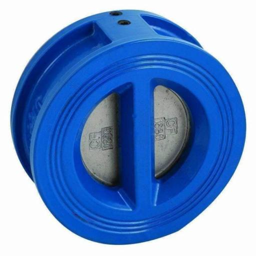 Dual Plate Check Valve Cast Iron
