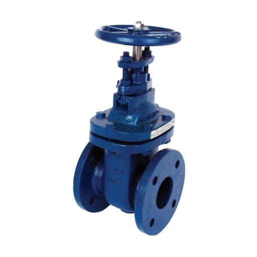 BS10 Table E Flanged Gate Valve